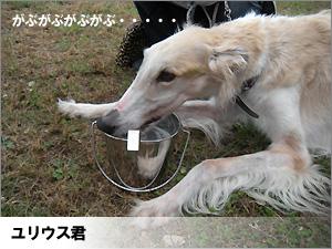 20091013_171.jpg
