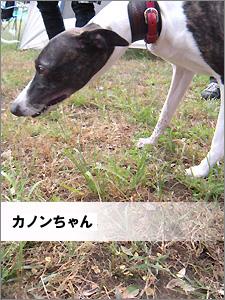 20091013_2001.jpg