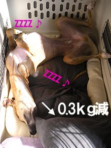 20091021_1.jpg