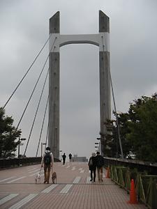 20091025_1.jpg