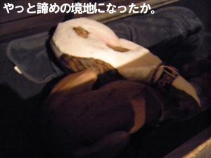 20091025_14.jpg