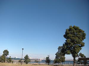 20101208_1.jpg