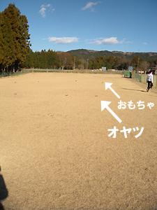 20101227_28.jpg