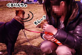 201100306_10.jpg