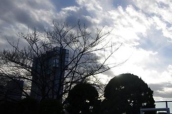 20110117_14.jpg