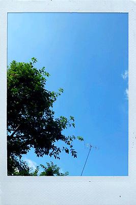 20111106_2.jpg