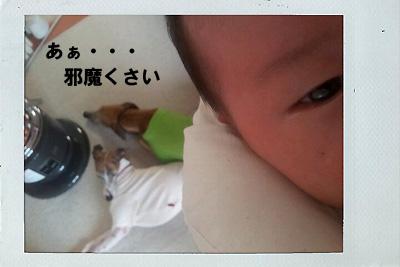20111111_5.jpg