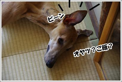 20120302_16.jpg