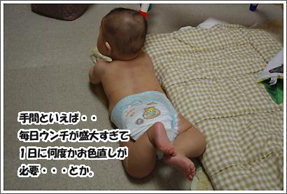 20120317_6.jpg
