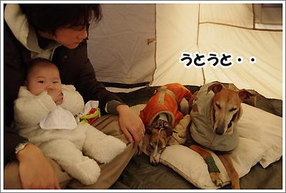 20120318_13.jpg