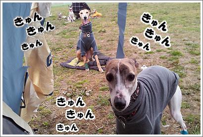 20120318_14.jpg