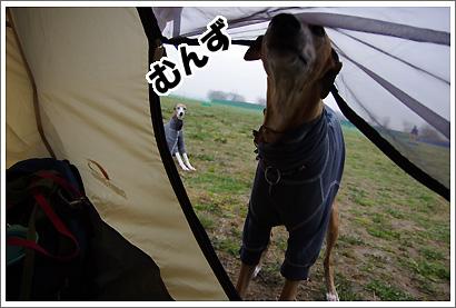 20120318_19.jpg