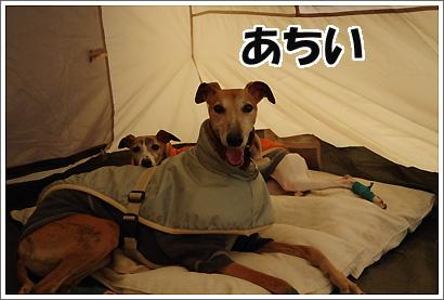 20120318_12.jpg