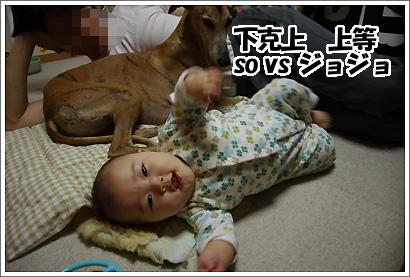20120330_10.jpg