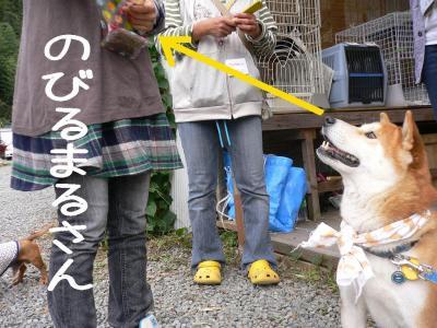 11_20091025210012.jpg