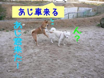 12_20100107231810.jpg