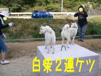 13_20091014123153.jpg