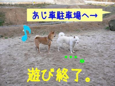 13_20100107231810.jpg