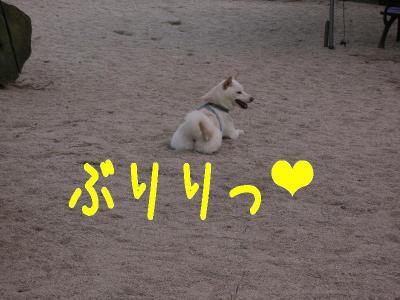 17_20091014123232.jpg