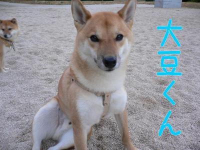 2_20091017203859.jpg