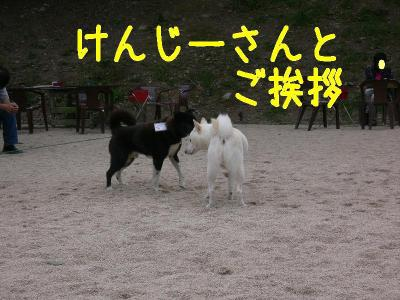 3_20091014123042.jpg