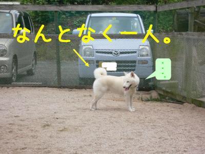 3_20100905212124.jpg