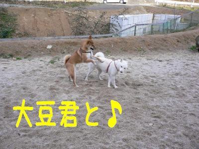 6_20100107225832.jpg