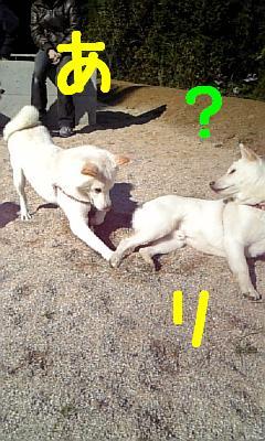 7_20091124213459.jpg