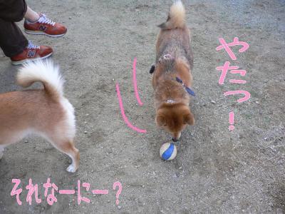 8_20091031205009.jpg