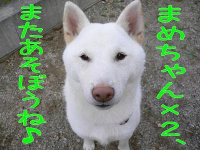 9_20091031205009.jpg