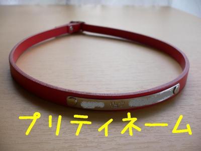 9_20091109103150.jpg