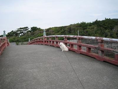 いい感じの橋