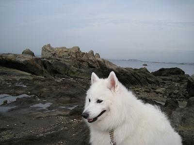 彼方に江ノ島