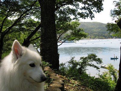 湖って百妹は初めてかな。