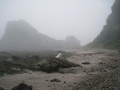 霧は少し晴れたかな