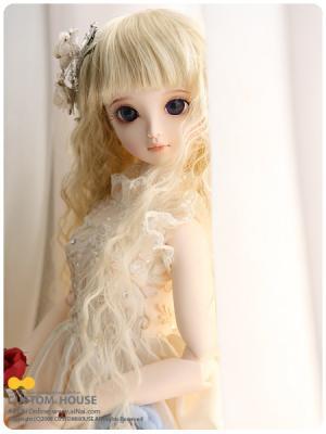 20080412_basic_sia_006.jpg