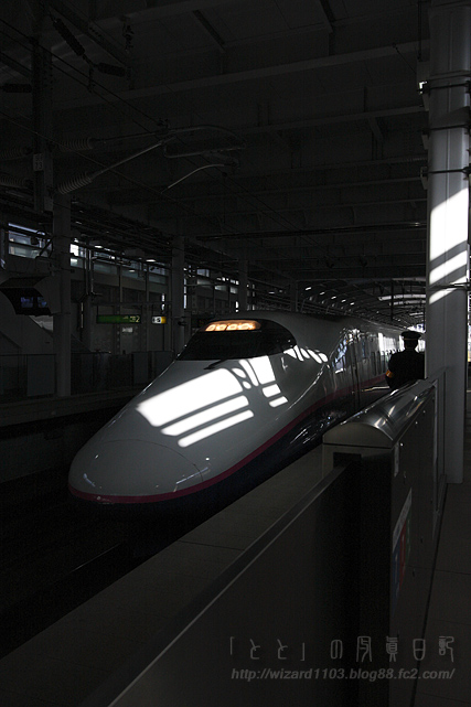 2008江戸02