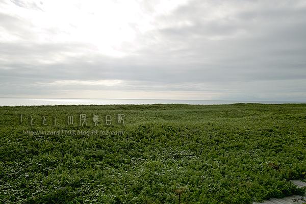 09北海道44