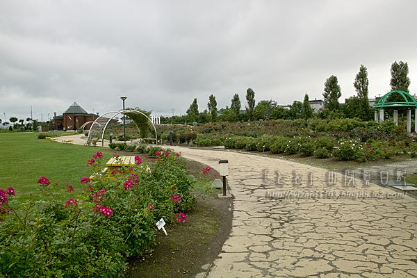 09北海道48