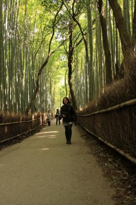IMG_1966京都写真