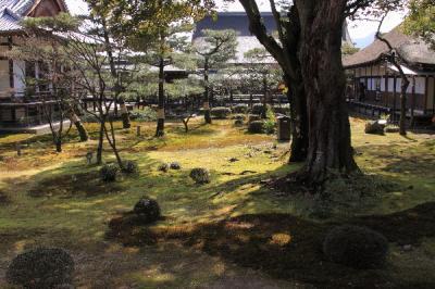 IMG_1984京都写真