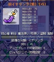 Maple091206_131416.jpg