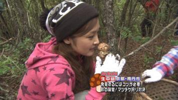 ishikawa-rika-lowrise04.jpg