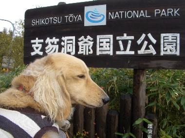 支笏湖洞爺国立公園