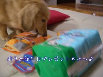 誕生日プレゼント.jpg