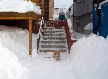 玄関の前.jpg