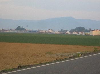 6月23日タマネギ畑.jpg