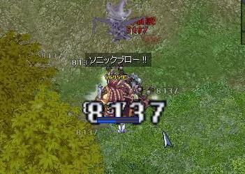 11_20081220093618.jpg