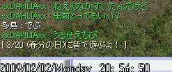 12_20090203151608.jpg