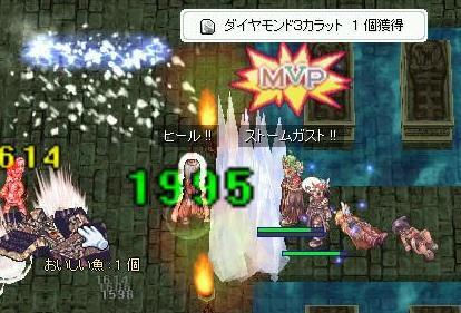 15_20090117181702.jpg